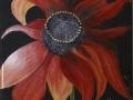 Rudbeckie - Bildplatte - 20cm