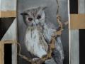 Bildplatte - Vogelmotiv Eule