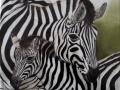 Bildplatte - 25cm - Zebras